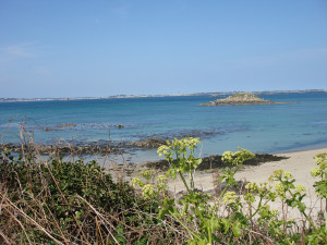 Guernsey4